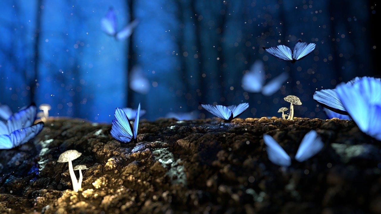 Drømmesymboler Mølleordbog